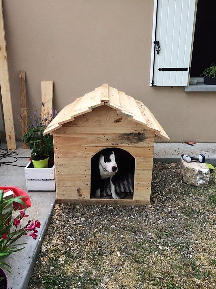 aurelie-dufour-pallet-dog-house