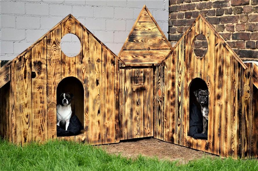 pallet-dog-house