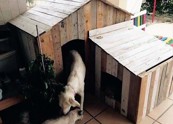 pallet-dog-house-idea