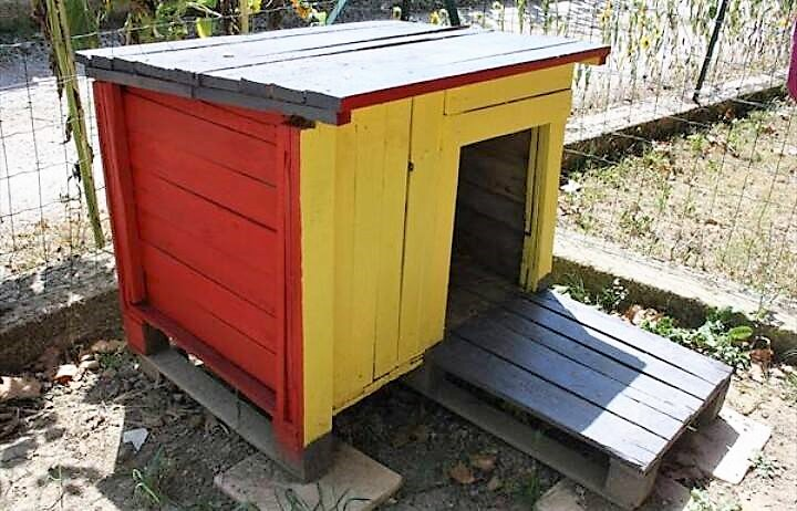 pallet-dog-house-in-garden