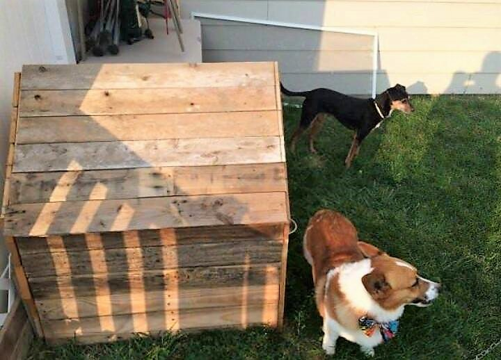 pallet-dog-house-project