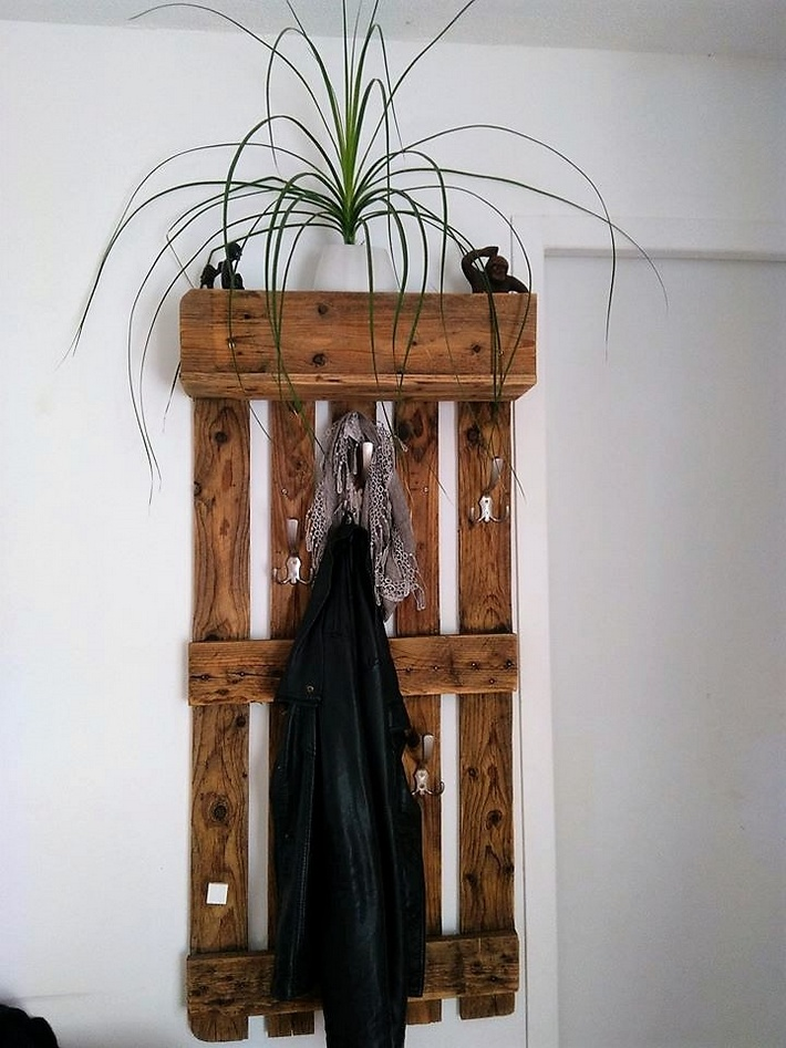 pallet-shelf-cum-hanger-idea
