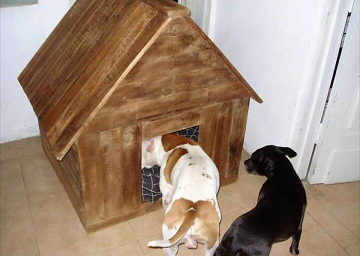 pallets-dog-house