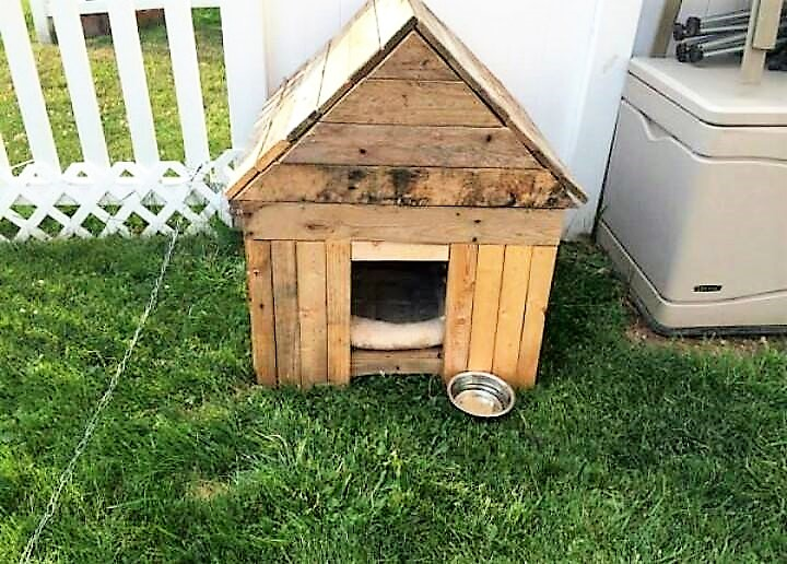 shipping-pallet-dog-house