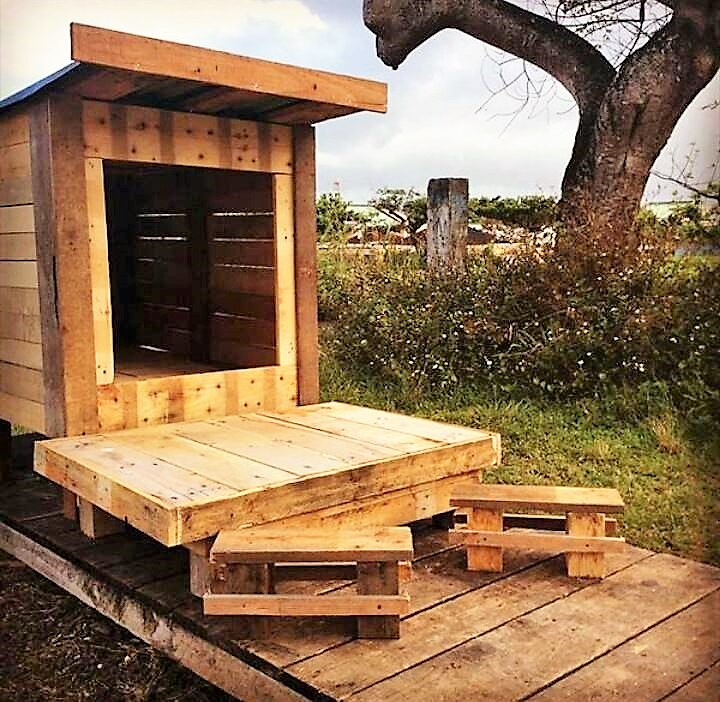 wood-pallet-dog-house