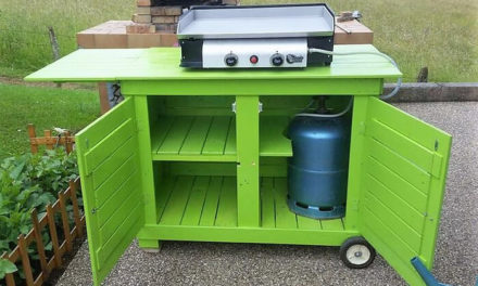 Wood Pallets Made Mobile Kitchen