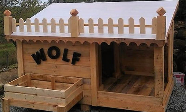 Creative Ideas with Used Shipping Wood Pallets
