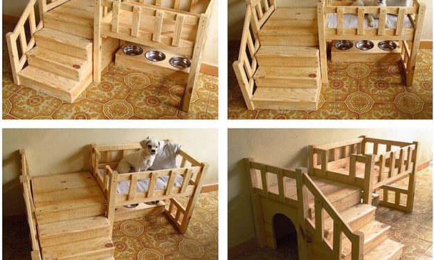 Reuse Your Dumped Pallets to Create Something Like These