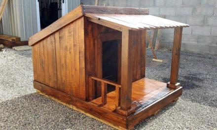 Reused Pallet Wood Made Dog House