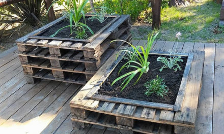 Simple DIY Plan for Wood Pallet Planters