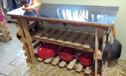 Some Interesting DIY Plans with Wood Pallets