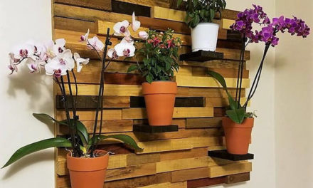 Creative Ideas with Recycled Shipping Wood Pallets