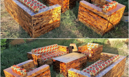 Ever You Think About These Pallet Recycling Ideas ?