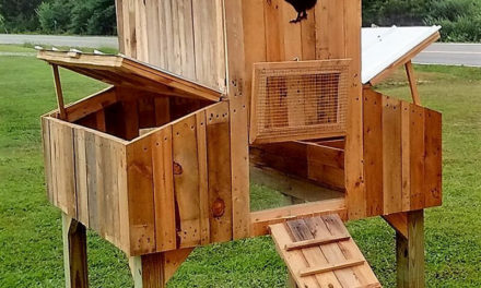 50 Easy DIY Ideas Out of Wooden Pallets