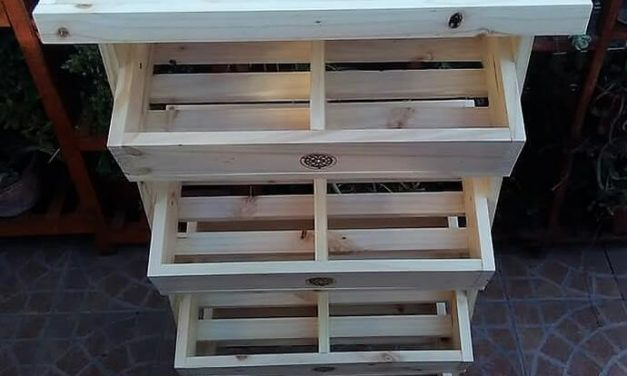 Wood Pallet Made Fruits Rack Plan