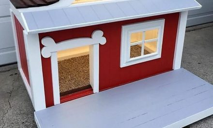 Dog House Made with Used Wood Pallets